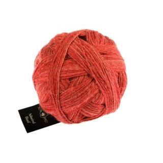 Roter Pfeffer 2443